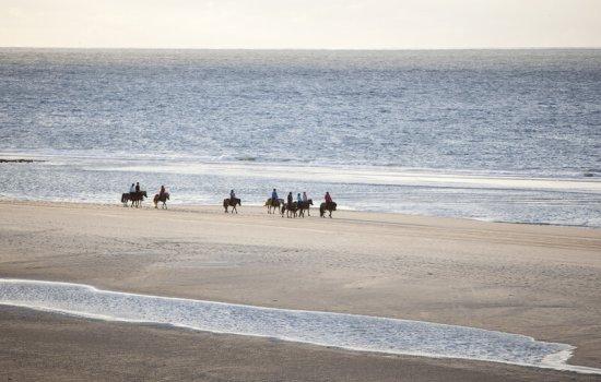 Strand holland zeeland fkk Strand Warnemünde